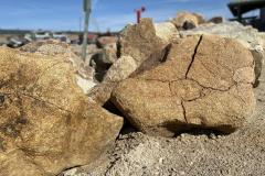 Brown Granite Boulders